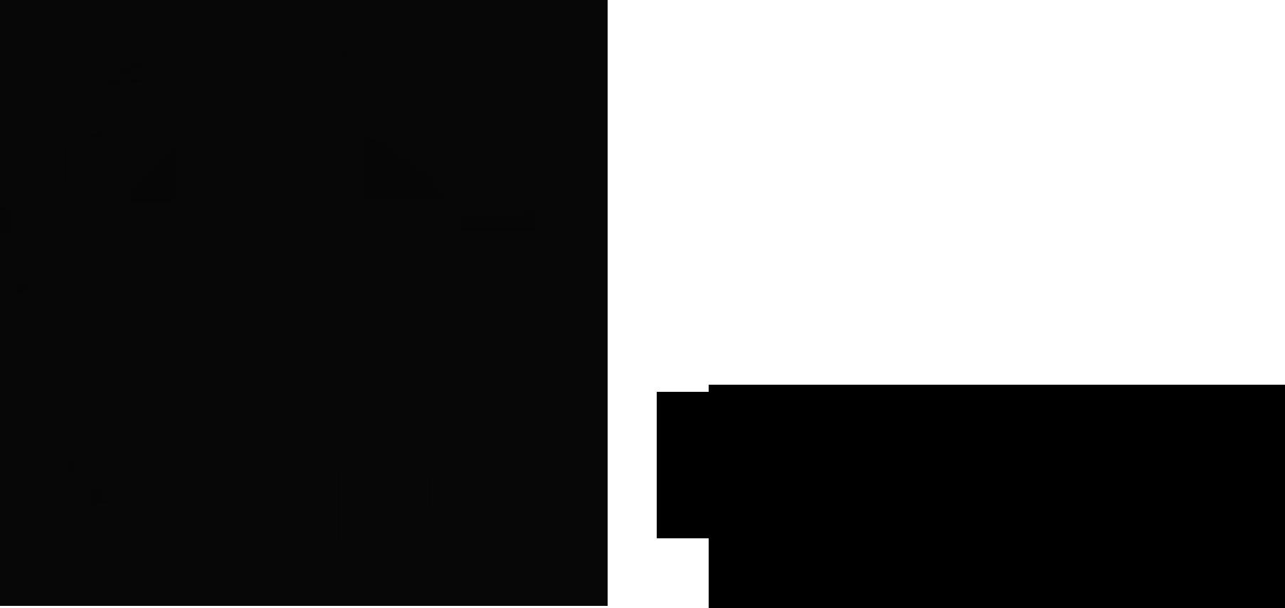 logo_locos_negro ajustado copia